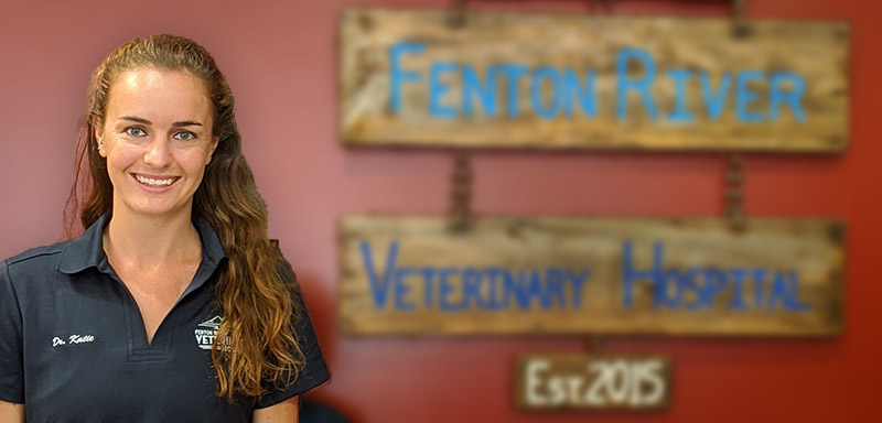 Katie Pruett Veterinarian at Fenton River Veterinary Hospital