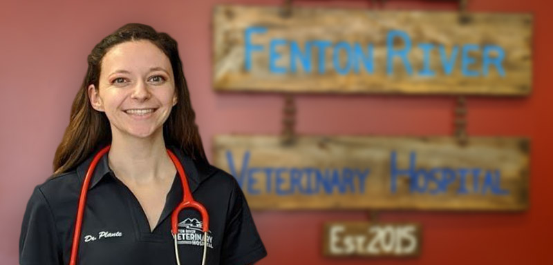 Dr. Sarah Plante Fenton River Veterinary Hospital